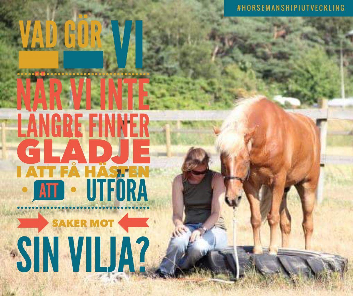När vi inte längre vill tvinga vår häst
