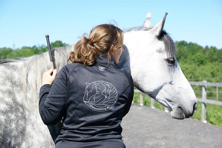 relation häst Anne Dirksen