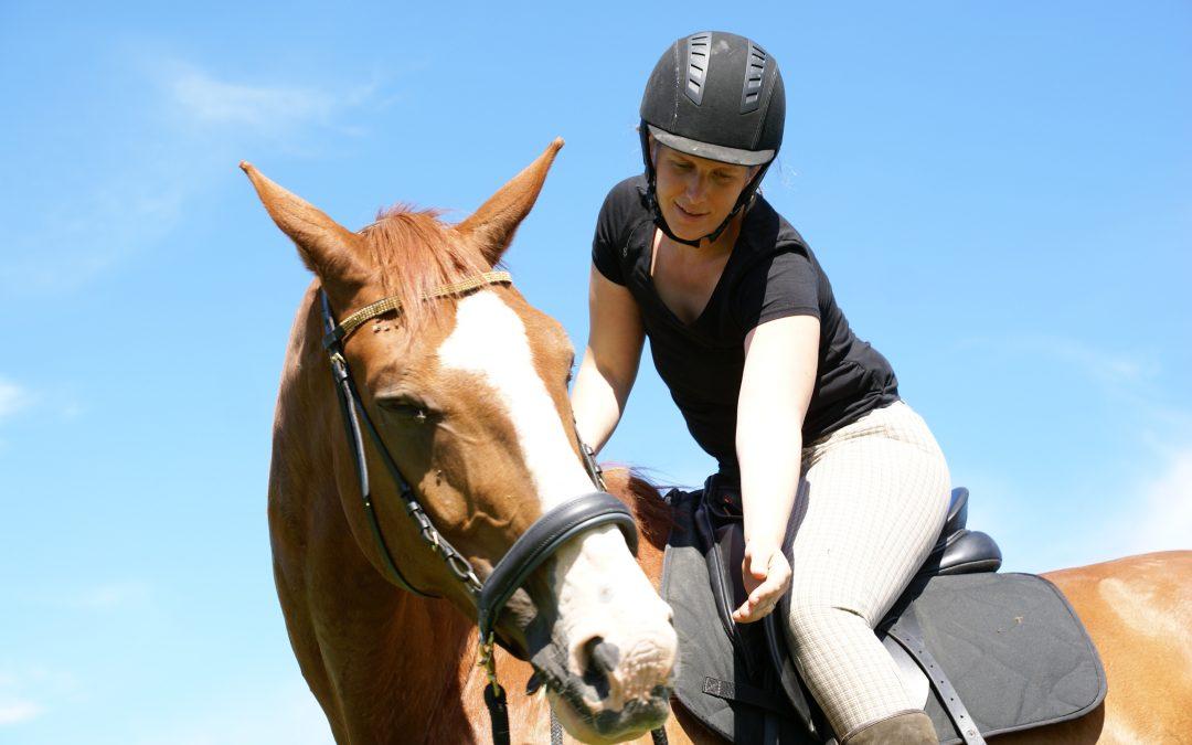 Rida cross-over häst