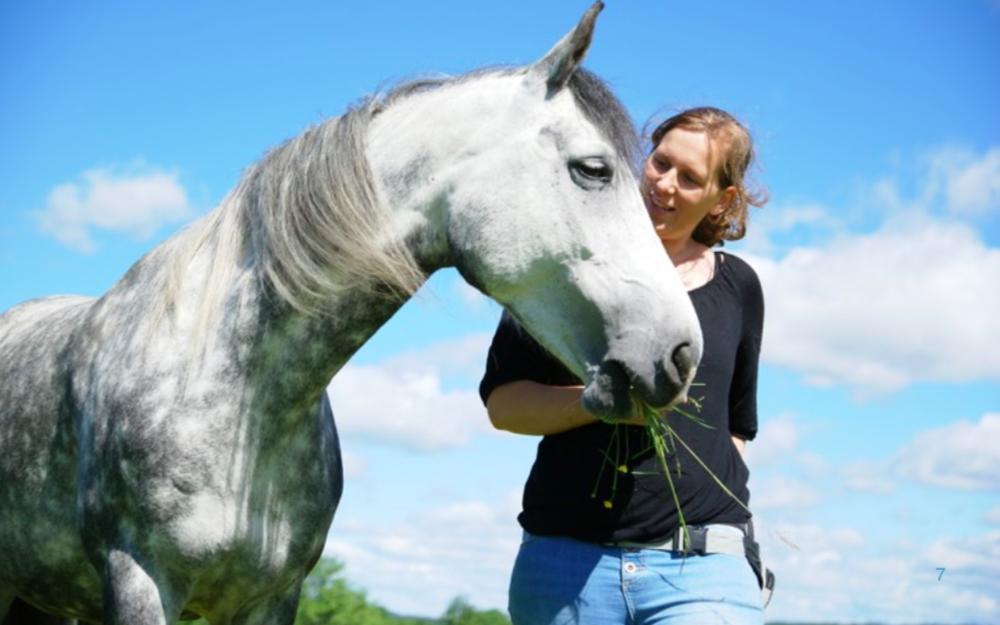 Stereotypier hos hästar  – och varför vi ska bry oss