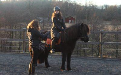 När hästen inte vill gå framåt