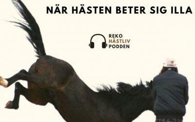 När hästen beter sig illa