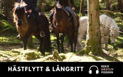 Hästflytt & Långritt